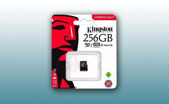 Карта памяти MicroSD 256Gb Kingston Canvas Select